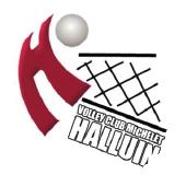 Logo Halluin